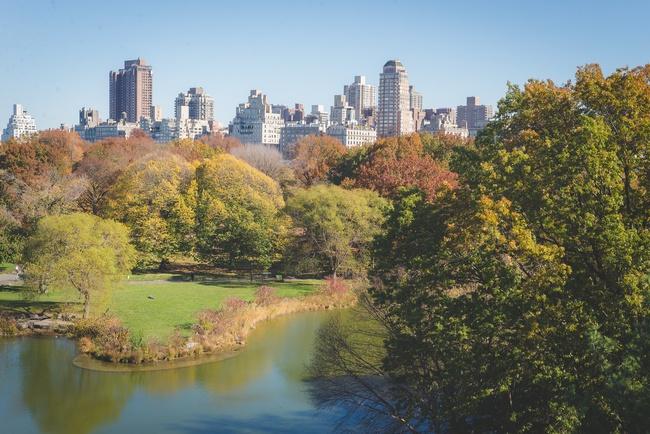 central park ny outono