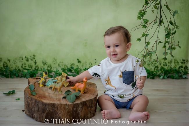 ensaio fotos bebe menino dinossauros